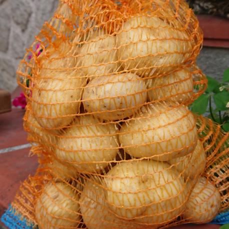 producteur-pomme-de-terre-ariege