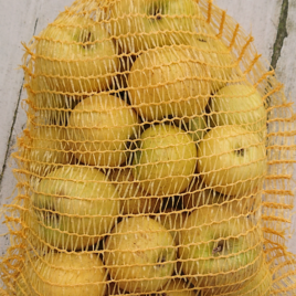 Pomme Fuji Filet de 3 kg