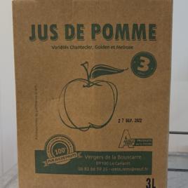 Jus de Pomme Sans Conservateur 3l